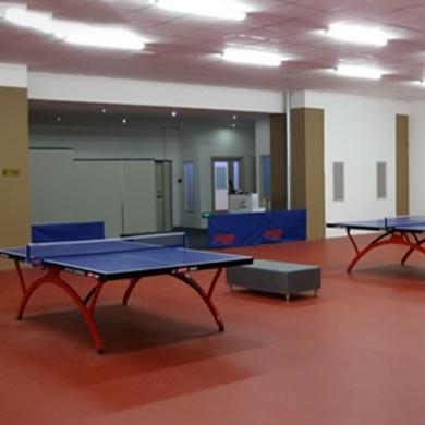 professional vinyl table tennis floor