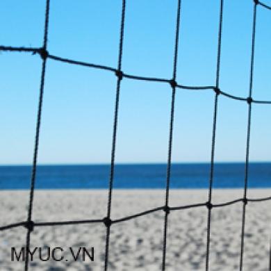 lưới bóng chuyền bãi biển tập luyện.