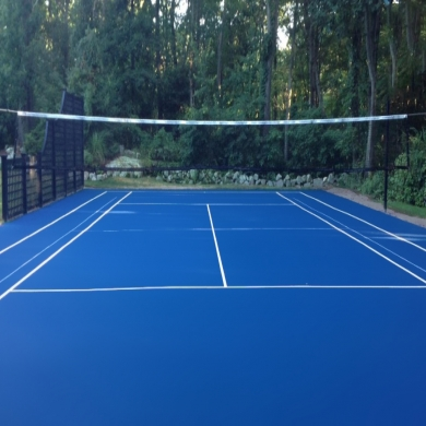 paint 46x88 tennis 1 color with lines mike, monica